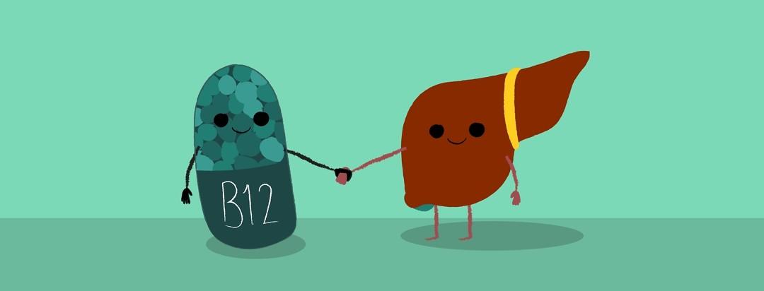 A cartoon vitamin b12 an a liver holding hands