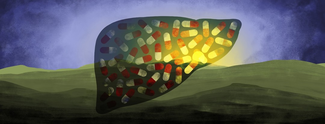 A liver filled with pills is set against a background of a sunrise, with the rays of sunlight coming through part of the liver on the right, illuminating some of the pills.