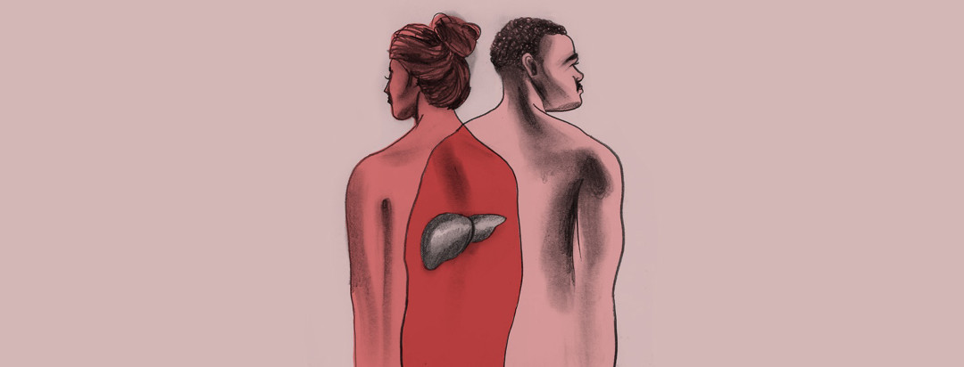 a pencil drawing of a man and of a woman, whose figures overlap, revealing one shared liver