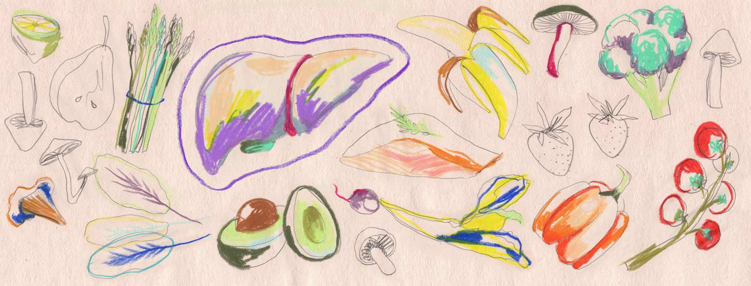 hand drawn images of a liver and healthy food choices and fresh produce