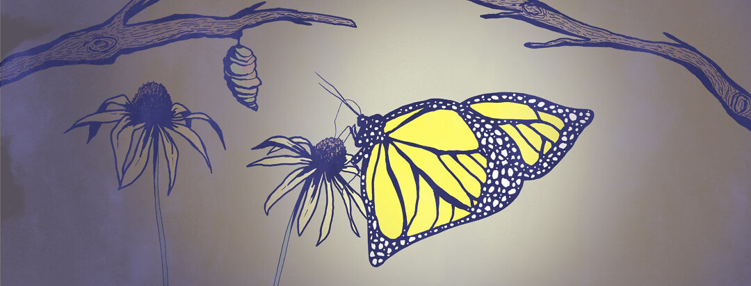 a butterfly with liver-shaped wings, exits it's chrysalis as a metaphor for Hep C damage being reversed