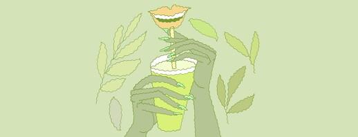 Fighting Hep C Fatigue with Green Tea image